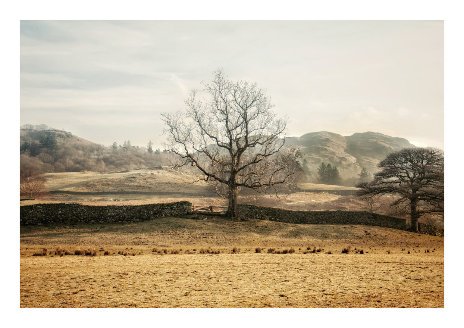 A4L_elterwater4
